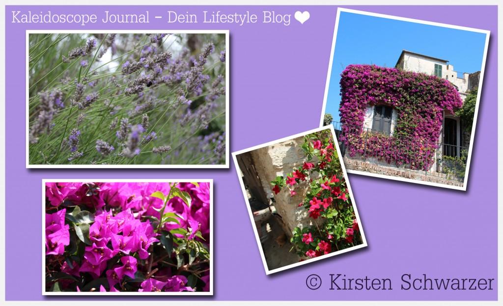 Urlaub in Bella Italia: Liebe geht durch den Magen, www.kaleidoscope-journal.de, Kirsten Schwarzer
